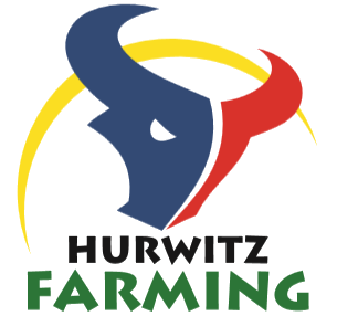 Hurwitz Farming Boran Auction